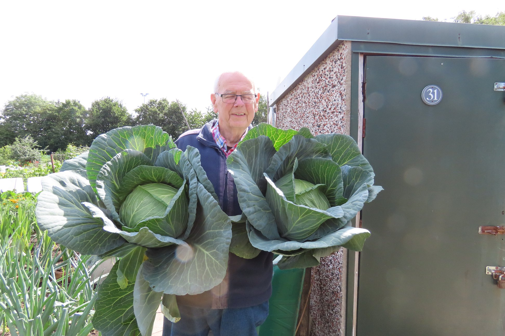 Image curtsey of Sharston Allotment Facebook page and Alan Breeze