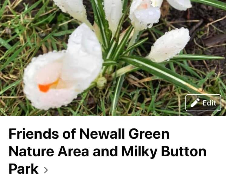 Freinds of Newall Green Nature Area and Milky Button Park